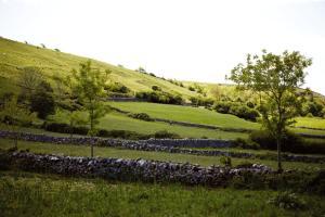 Burren farmland