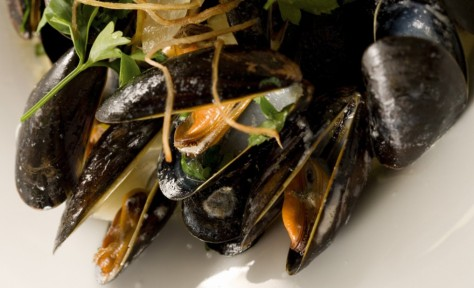 ely card mussels