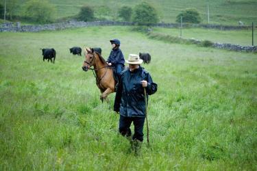 Burren Farmland.