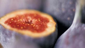 Figs 367098